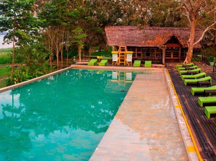 amazon-piscina-min